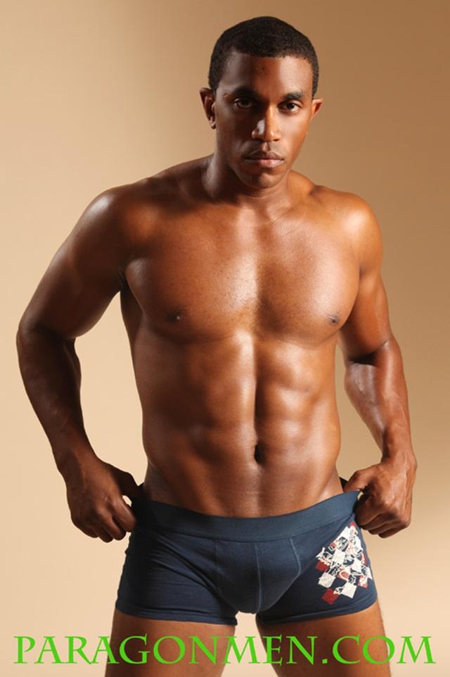 Paragon Men: Black Beauty Darrin James