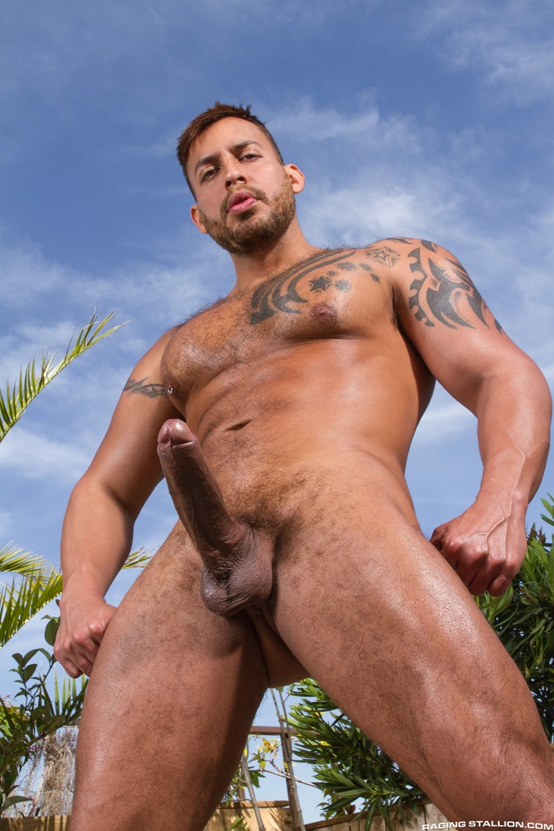 ragingstallion-hairy-chest-big-muscle-hunks-mario-domenech-viktor-rom-thick-long-dick-sucking-ass-fucking-cocksucker-dirty-men-006-gay-porn-sex-gallery-pics-video-photo
