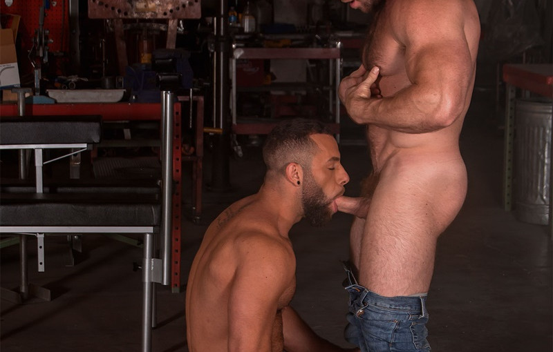 Hardcore muscle dudes Liam Knox and Eddy Ceetee fuck in the sling factory