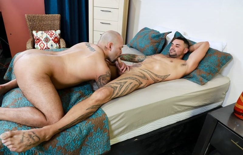 Sexy tattooed stud Tegan Reigns' huge cock fucks big daddy JD Travis' tight butt