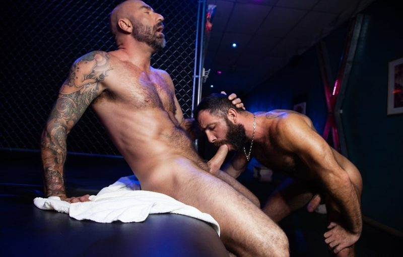 Hairy big muscle hunks Drew Sebastian and Jake Nicola bareback doggie style anal